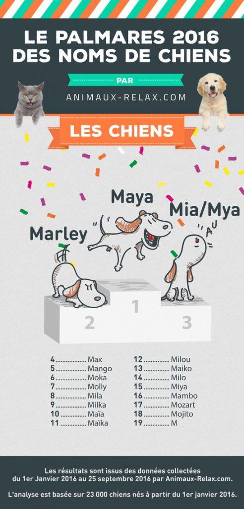 classement prénoms de chiens