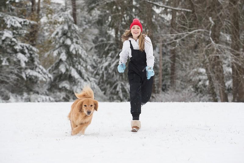 emmener son chien au ski