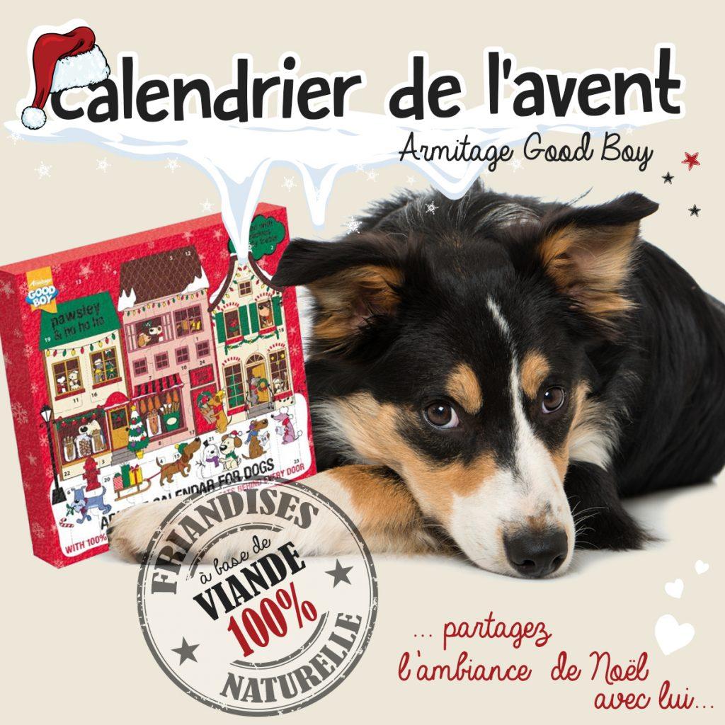 Fêtez Noël avec le calendrier de l'Avent Good Boy d'Armitage !