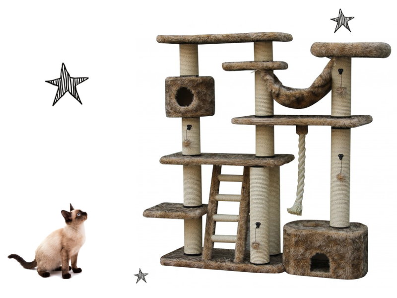 Découvrez nos arbres à chat élancés d'Ebi !