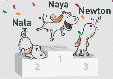 classement prénoms chiens et chats