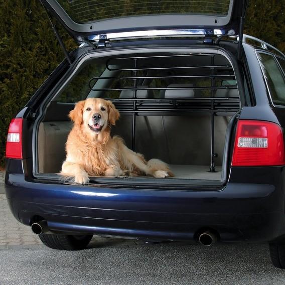 5 conseils pour transporter en voiture votre chien en toute sécurité !
