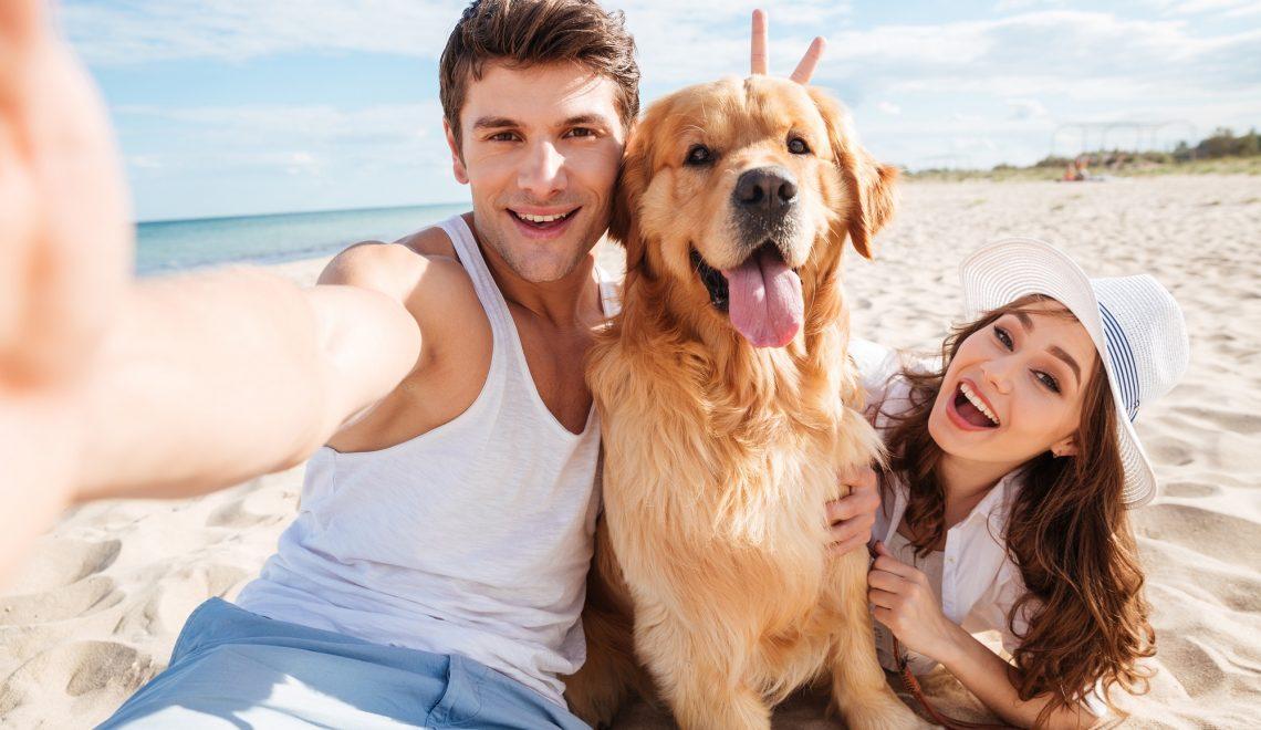 8 conseils pour emmener votre chien à la plage !