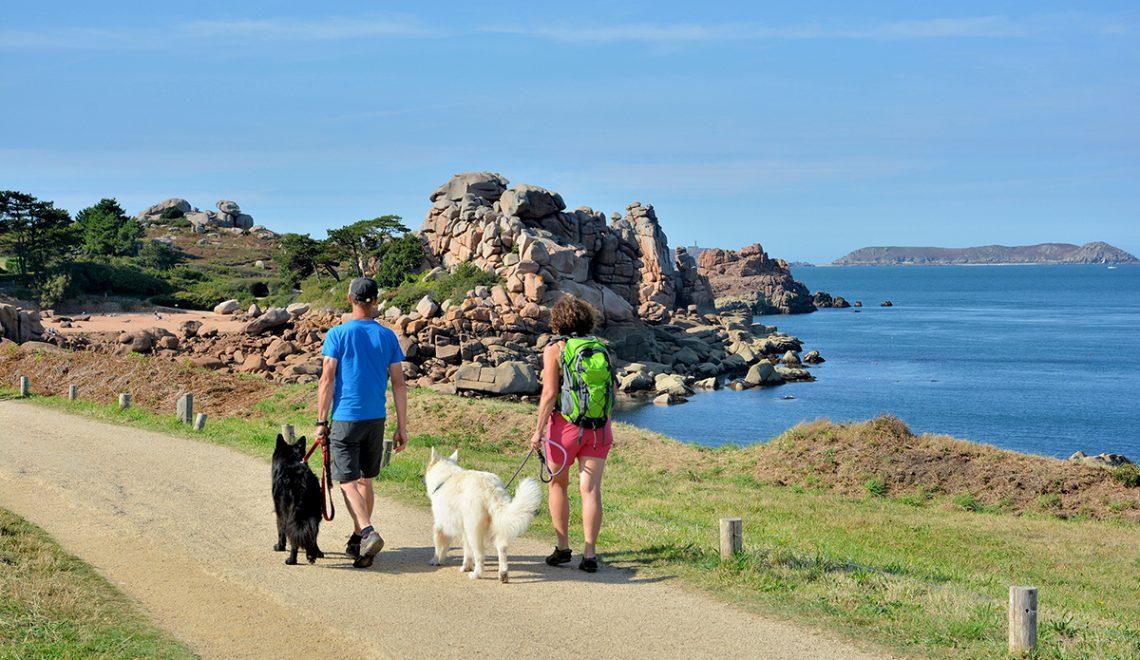Destinations vacances avec votre chien !