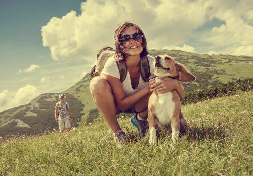 randonnée avec votre chien