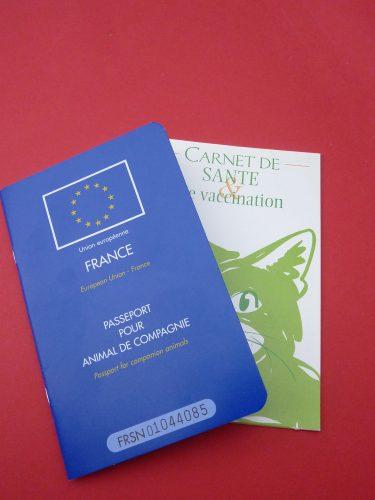Passeport et carnet de santé pour chien