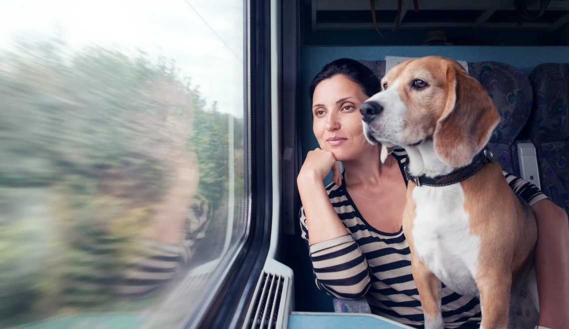 Voyager en train avec son animal